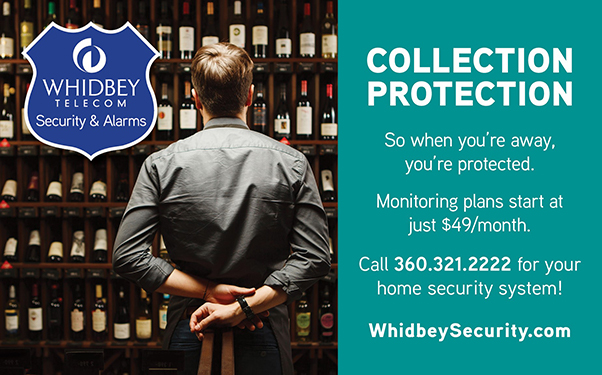 Whidbey Telecom Security