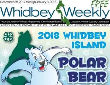 Issue 28 December, 2017